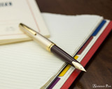Pilot E95S Fountain Pen - Burgundy and Ivory - Posted on Notebook