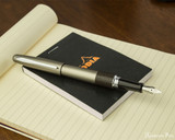 Pilot Metropolitan Fountain Pen - Lizard - Open on Notebook