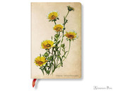 Paperblanks Mini Journal - Painted Botanicals Woodland Daisies, Lined