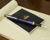 Pilot Metropolitan Fountain Pen - Leopard - Open on Notebook