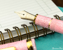 Platinum 3776 Celluloid Fountain Pen - Cherry Blossom