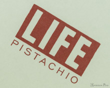 Life Pistachio Notebook - A5 (6 x 8), Lined Paper - Cover
