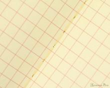 Life Vermilion Notebook - A5 (6 x 8), Graph Paper - Page Closeup