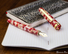 Platinum 3776 Celluloid Fountain Pen - Koi - Open on Notebook
