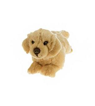 Maple - Golden Retriever -  Plush - 28 cm