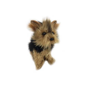 Australian Yorkshire Terrier Plush Toy - Archie - 28 cm