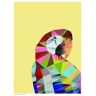 Macaw art print - size A4 - made in Australia