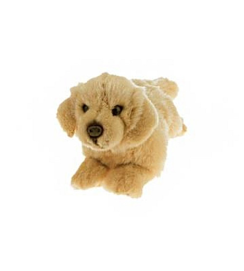 Maple - Golden Retriever -  Plush - 28 cm