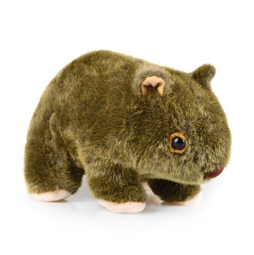 Wombat - Plush Toy - 25 cm  - Australian Made