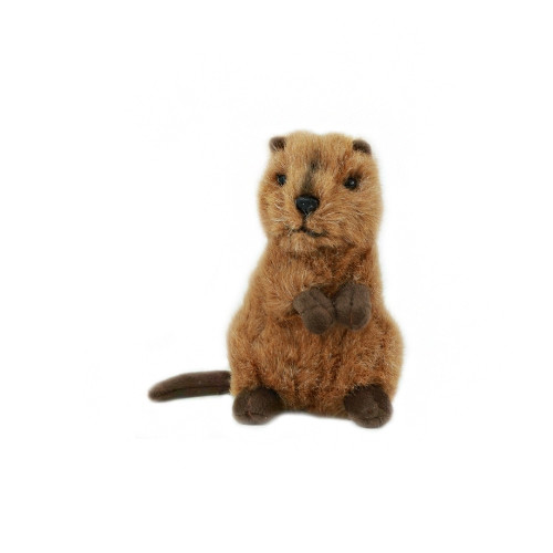 Mini Quokka Plush Toy - 14 cm - Bocchetta Plush