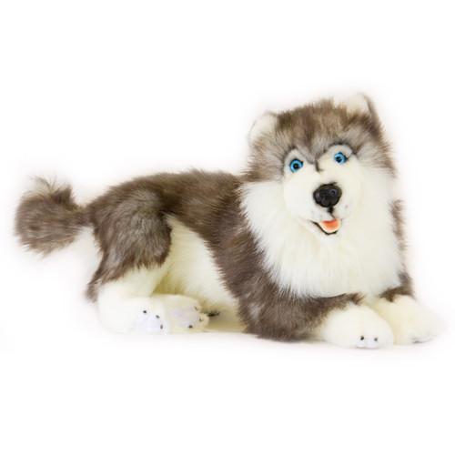 Husky Dog Plush Toy - Skye - 40 cm lying - hand made