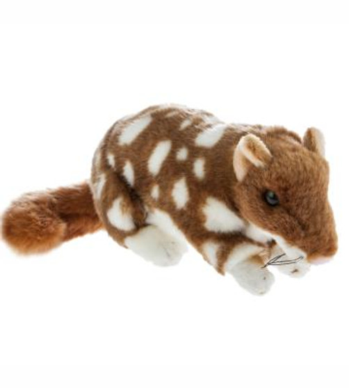 Eastern Quoll Plush Toy - Spotty - 22 cm