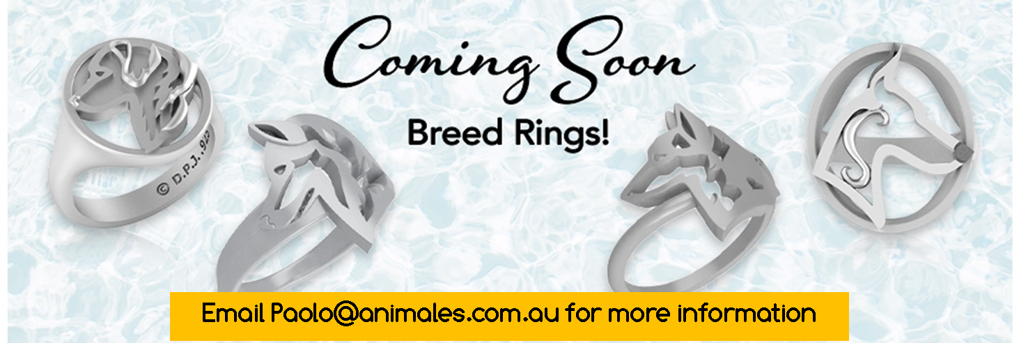 new-rings.png