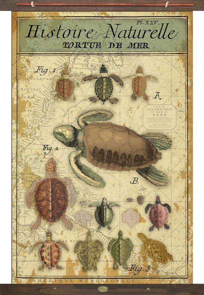 Sea Turtles Vintage Canvas Tapestry Wall Art