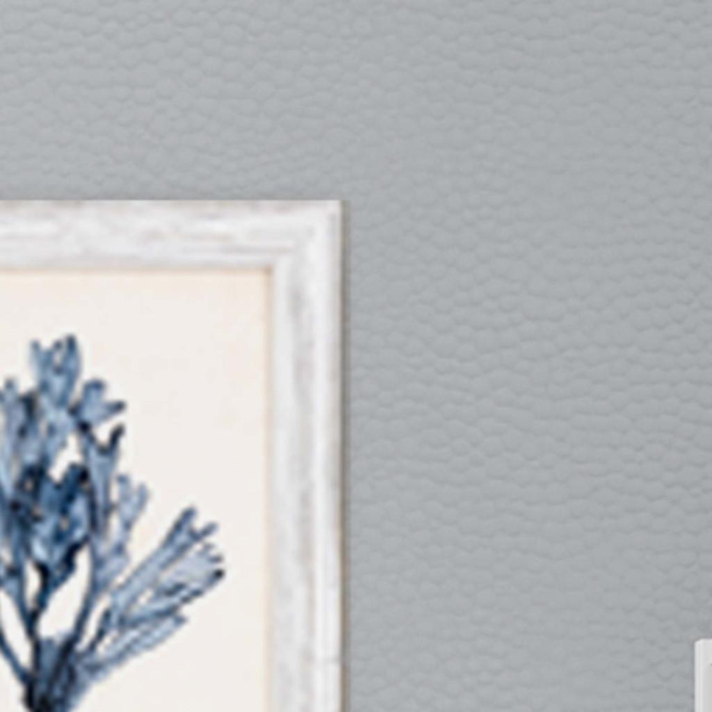 Blue Seaweed Specimens Framed Set of Four corner close up