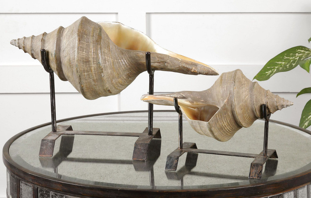 Conch Shell Tabletop Sculptures - Set of 2 room view