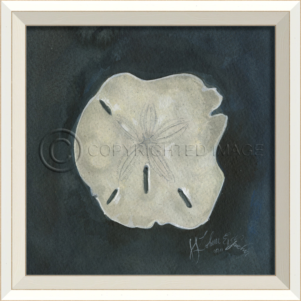 White Cottage Seashell No. 7 Art