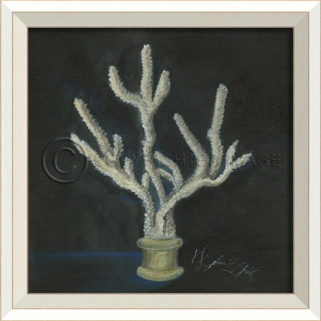 White Cottage Seashell No. 6 Framed Art