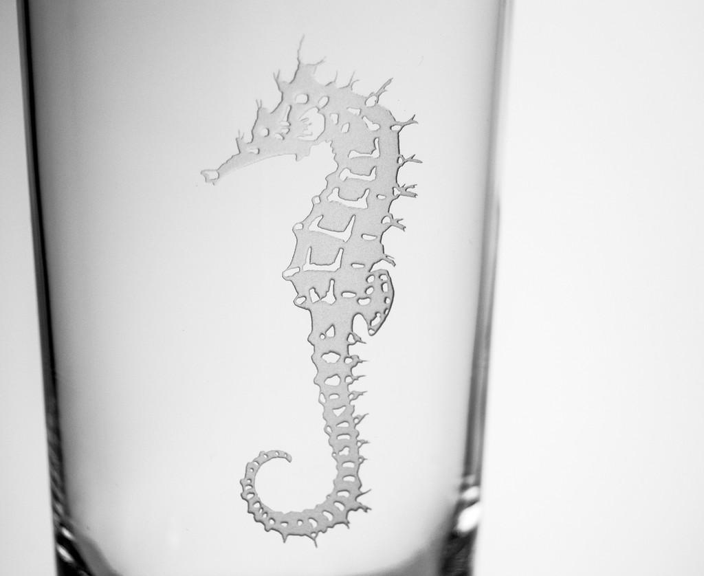 Seahorse Etched Cooler Glasses - Set of 4 close up details