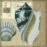 Indigo Blue Shell and Vintage Postcards Art 4