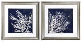 Coastal Indigo Blue Coral Framed Prints