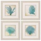 Blue Coral Prints - Set of 4