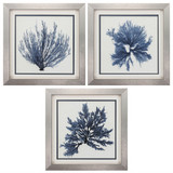 Silver Framed Coral Blue Art