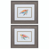 Watercolor Sea Turtle Framed Art - Set of 2