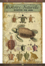 Sea Turtles Vintage Canvas Tapestry Wall Art