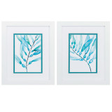 Watercolor Kelp Framed Art - Set of 2
