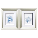 Navy Blue Sea Fan Art - Set of Two