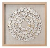 Maldives White Abalone Shells Framed Wall Art
