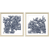 Indigo Blue Coral Images II - Set of Two