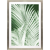 Palm Shadows Green I