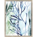 Sea Leaves II Shadow Box Framed Art