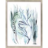 Sea Leaves III Shadow Box Framed Art
