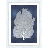Sea Fan on Blue I with White Frame