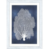 Sea Fan on Blue II with White Frame