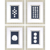 Sand Dollars Shadowbox Art - Set of Four