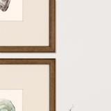 Ocean Blades Oyster Art - frame