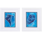Ceruliean Shells A White Framed Art - Set of Two