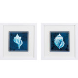 Indigo Blue and White Shell Prints - Set of Two