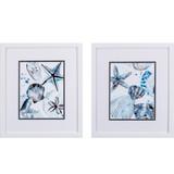 Cerulean Sea Life I White Framed Art- Set of Two