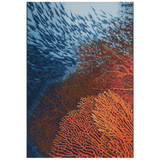 Coral Ocean Indoor-Outdoor Area Rug