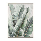 Musa Palms 2 Framed Canvas Art