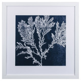 Midnight White Coral II Framed Wall Art