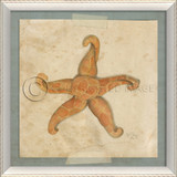 Starfish No. 3 Beach Art