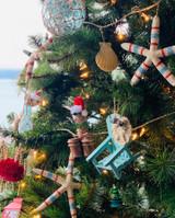 Beautiful Coastal Christmas Trees