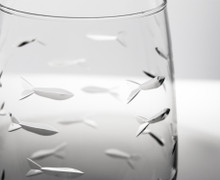 School of Fish Stemless Tumbler close up image