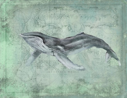 Humpback Whale Art by Anthony Morrow